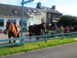 Traws Cambria Horse Ride at Siop Cynfelyn pic 32.jpg